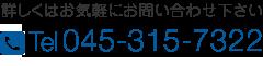 045-315-7322