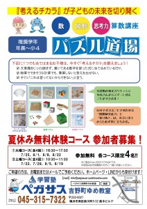 パズル道場_募集_2017夏1