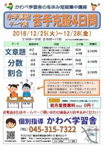 冬期講習20181